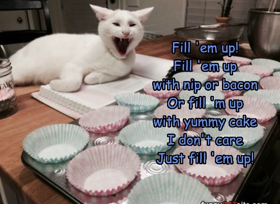Fill 'em up! Fill 'em up  with nip or bacon Or fill 'm up  with yummy cake I don't care Just fill 'em up!