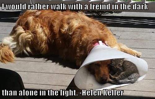 I would rather walk with a freind in the dark  than alone in the light. -Helen Keller