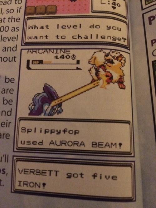 pokemon memes slippyfop