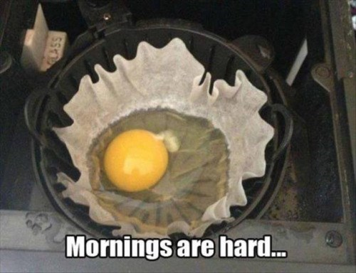 funny memes mornings are hard