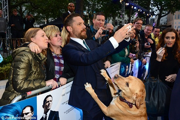 Good Boy of the Day: Tom Hardy Took His Dog To The Premiere Of 'Legend'
