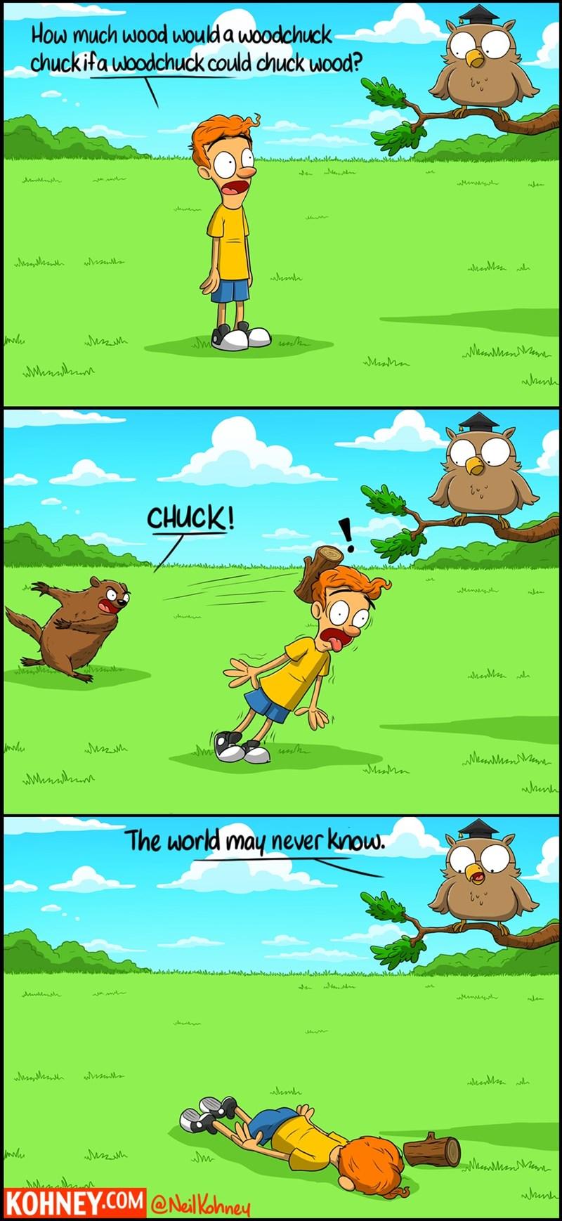 critters owls web comics woodchuck - 8560849408