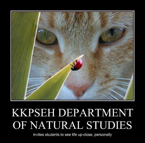 KKPSEH DEPARTMENT OF NATURAL STUDIES