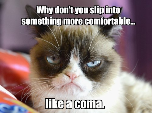 Grumy Cat Wants You To Be Comfortable