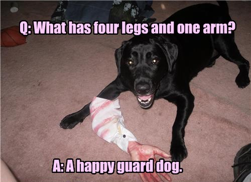 guard dog,arm,happy,caption