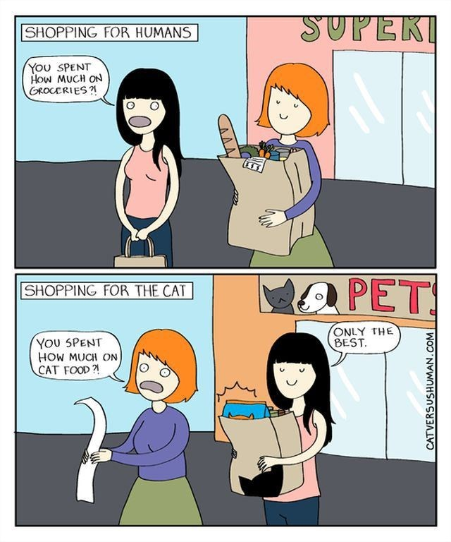 funny-web-comics-shopping-for-your-human-friends-vs-your-furry-friends