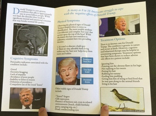 Text - onald Tramp is a rare genetic As many as S in 10 Americans struggle to cope awith the negative effects of atald Trump condition that affects approsimanely one in seven bllion peopie Whik not faral, the disonder does result in significant mental and emotional concerns tht may hinder noemal life quality Physical Symptoms Oberving the physical signs of Donald Tmp is helpfl when it comes to akocation. The most notable artribt san claborate and complex hair nes tha acrues upon the top of the h