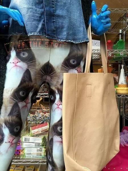 funny memes grumpy cat leggings