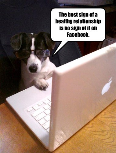 dogs healthy relationship facebook caption no