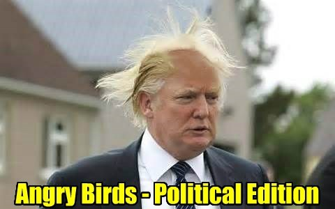Angry Birds - Political Edition