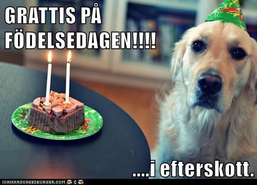 grattis på födelsedagen i efterskott GRATTIS PÅ FÖDELSEDAGEN!!!! .i efterskott.   Cheezburger  grattis på födelsedagen i efterskott