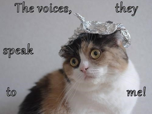 The voices,             they speak to                                 me!