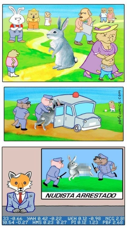 mundo conejo
