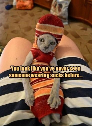 You look like you've never seen someone wearing socks before...