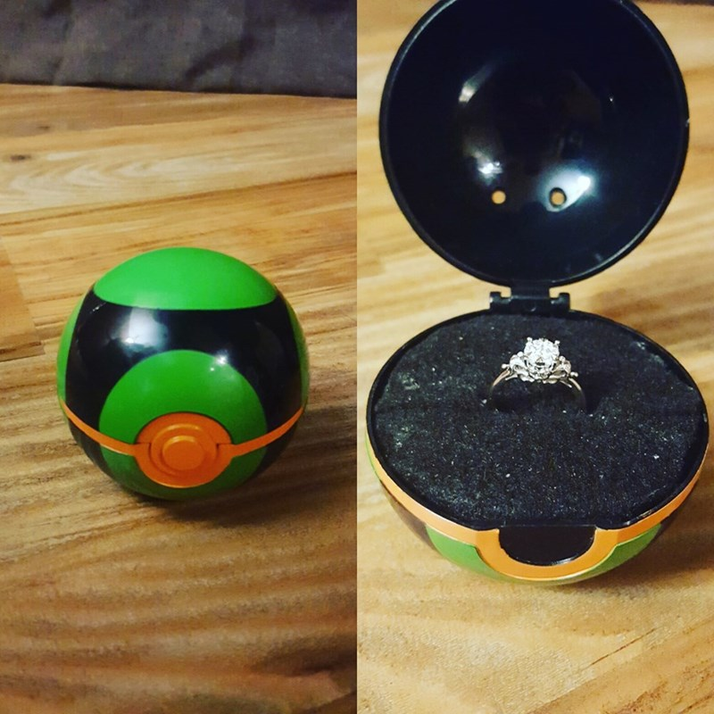pokemon memes dusk ball proposal