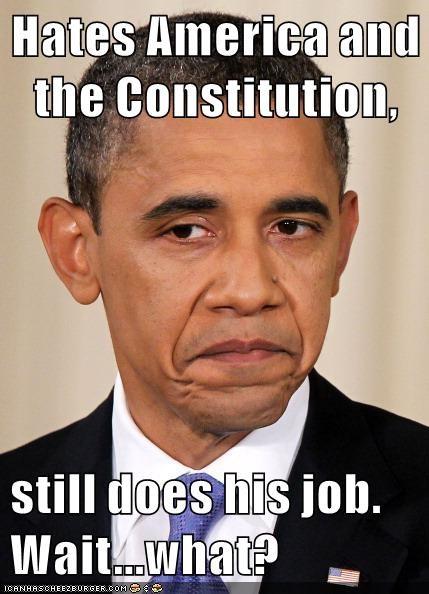 Democrat barack obama - 8566118656