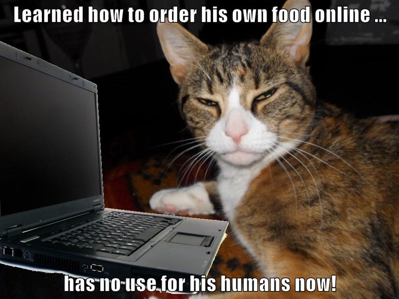 Learned how to order his own food online ...  has no use for his humans now!