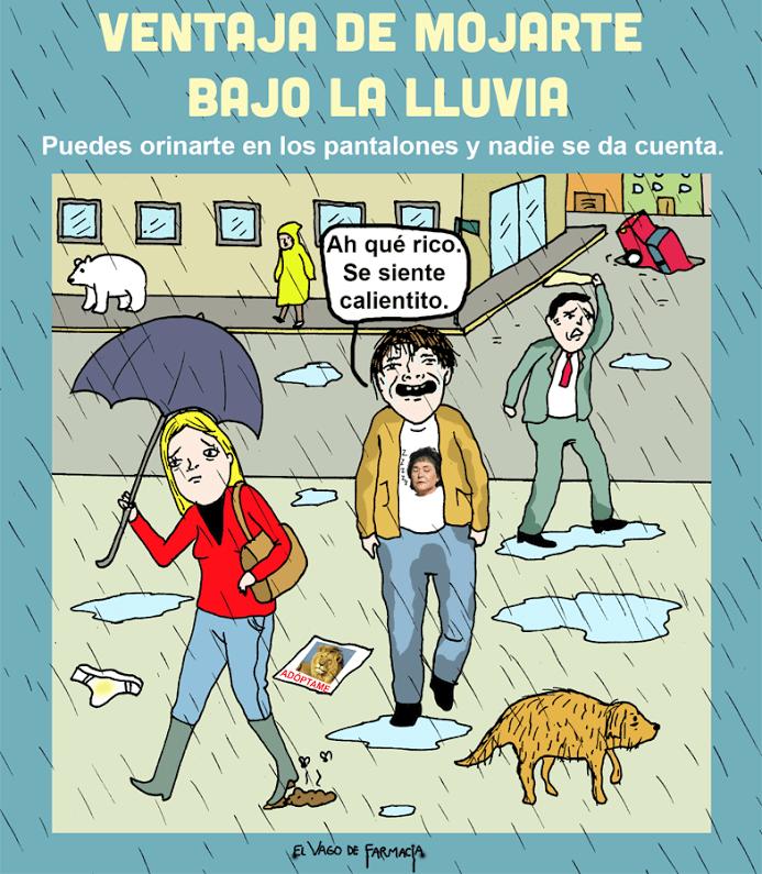mojarte bajo la lluvia