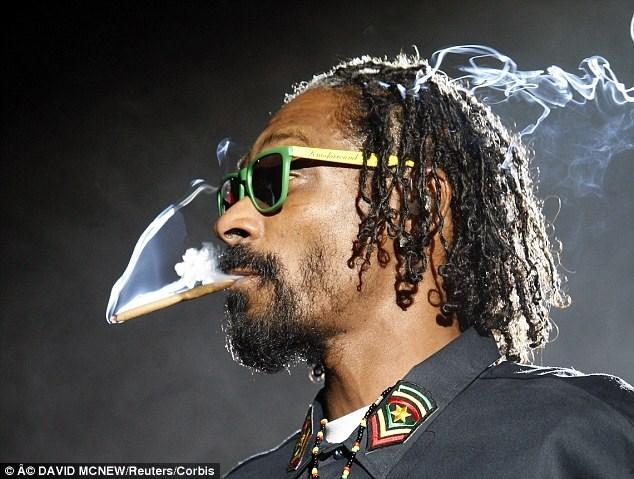 Snoop Dogg announces Merry Jane pot platform at TechCrunch's Disrupt.