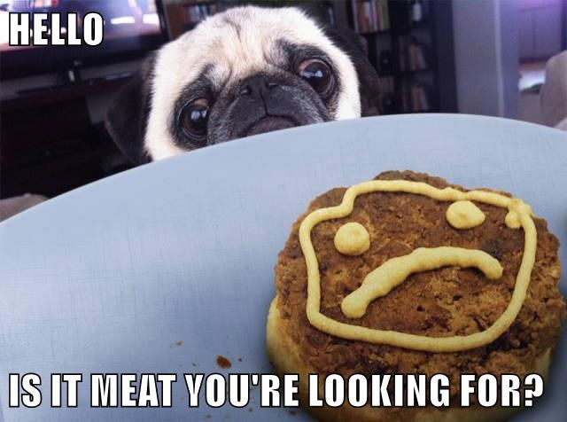 hello,dogs,lionel richie,caption,meat