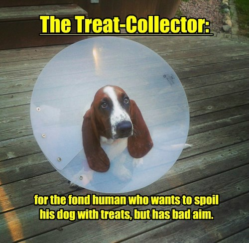 bad dogs aim collector treat caption - 8568080384