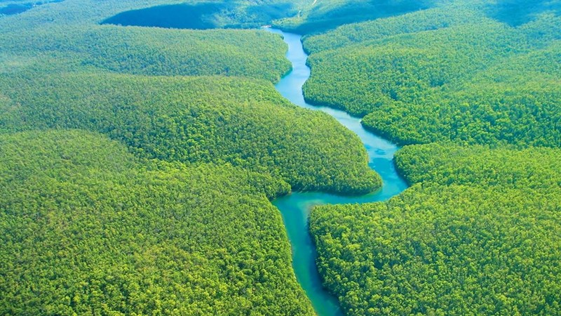 Brazil receives $1 billion from Norway for reducing deforestation.