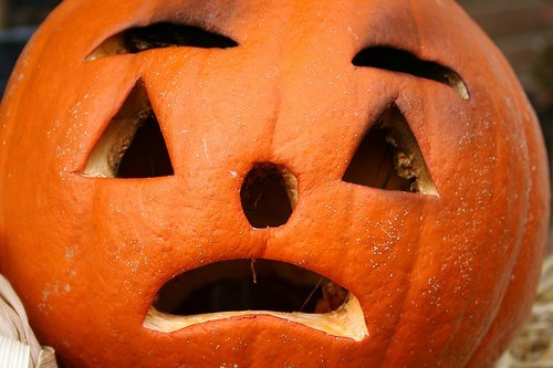 Authorities found $6 million of cocaine in a shipment of pumpkins and squash.