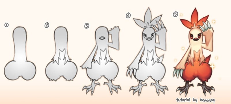 pokemon memes combusken looks like a dong