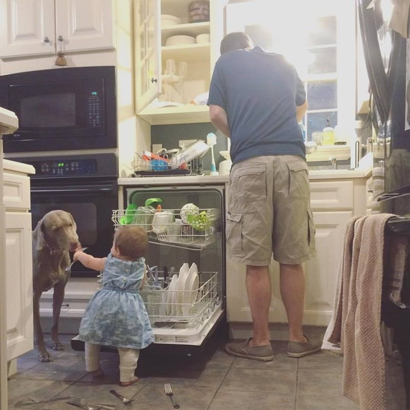 Dog and Baby 'Helping' Empty the Dishwasher