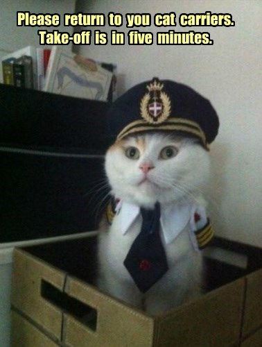 Please  return  to  you  cat  carriers.  Take-off  is  in  five  minutes.