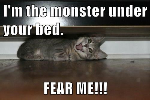 animals captions cute Cats monster - 8569238528