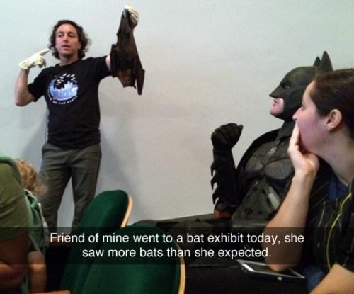 superheroes-batman-dc-goes-to-a-bat-exhibit-meme
