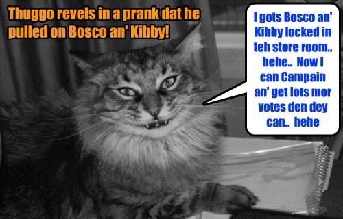 KKPS Fall 2015: As teh race for Klass Prezzident heats up, Thuggo resorts to munkey bizness!
