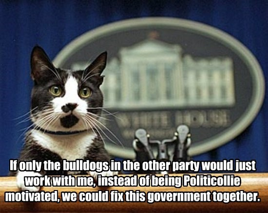 """""""Like"""" and """"Share"""" if you think all Politicollies should be voted into the Doggie Pound"""