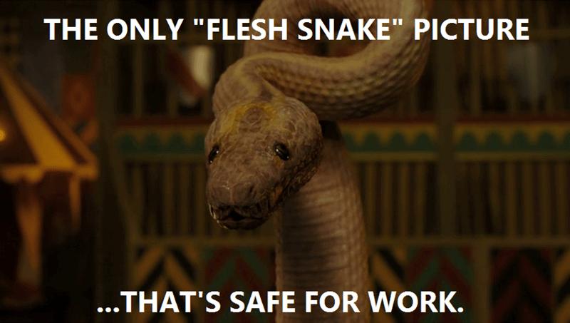 funny-doctor-who-flesh-snake-colony-sarff-meme
