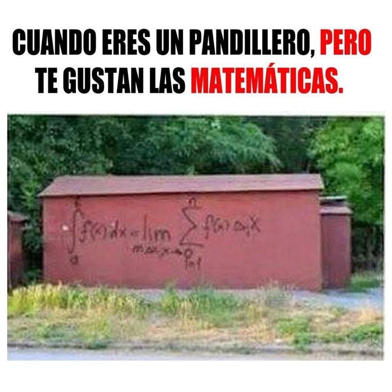 pandillero matematico