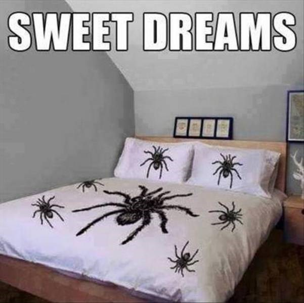 wtf bed sheets spider - 8570353408
