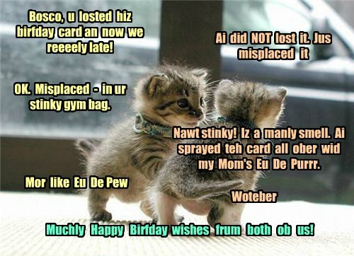 Happy Belated Birthday icguy34 from Bosco and Kibby - Cheezburger - Funny  Memes | Funny Pictures