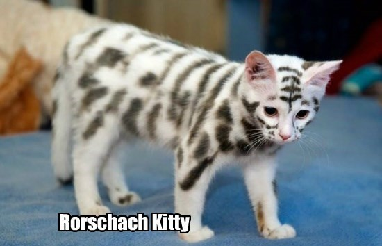 Rorschach Kitty