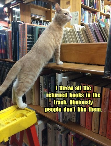 cat,trash,returned,books,caption