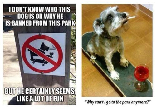 party-fails-mans-best-friend-for-a-reason