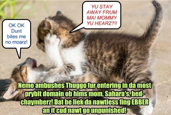 Nemo thrashes Thuggo fur campayn nawtinesses!