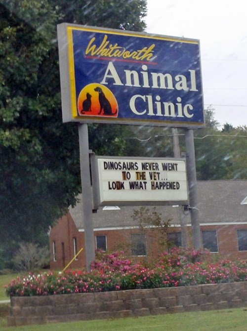 funny memes animal clinic dino sign