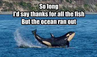 So long I'd say thanks for all the fish But the ocean ran out