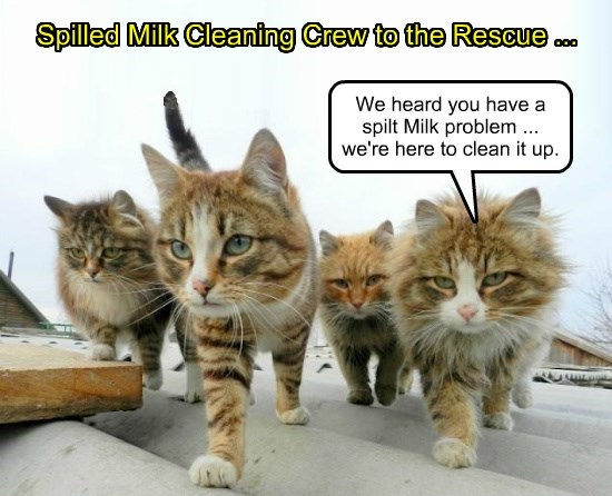 Spilt Milk Cleaning Crew ...