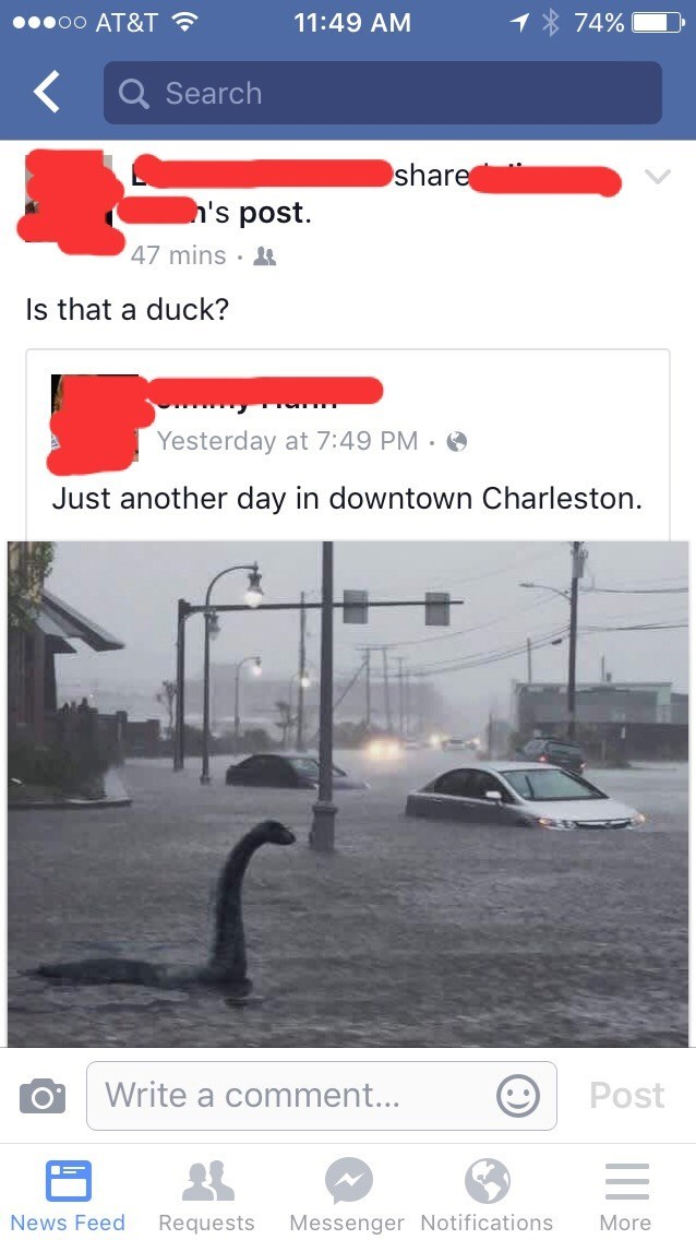 FAIL,ducks,flooding,photoshopped