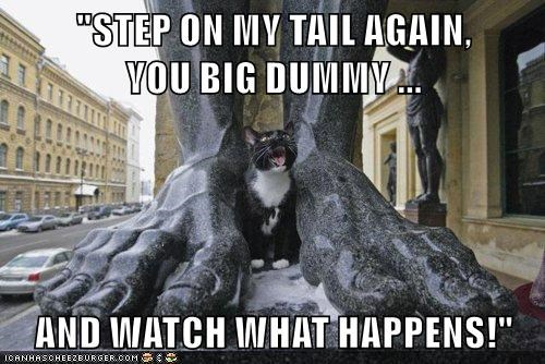 animals step cat happens see statue tail caption - 8571250176