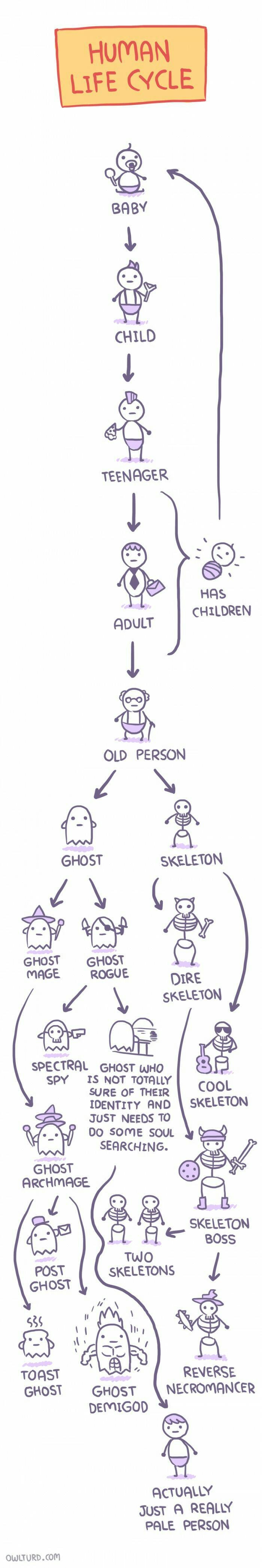 funny-web-comics-the-most-accurate-representation-of-the-human-life-cycle