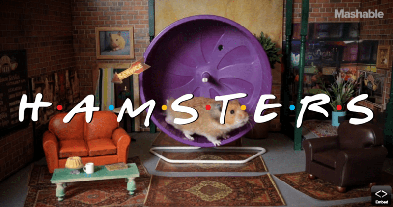 Mashable remade 'Friends' with hamsters.