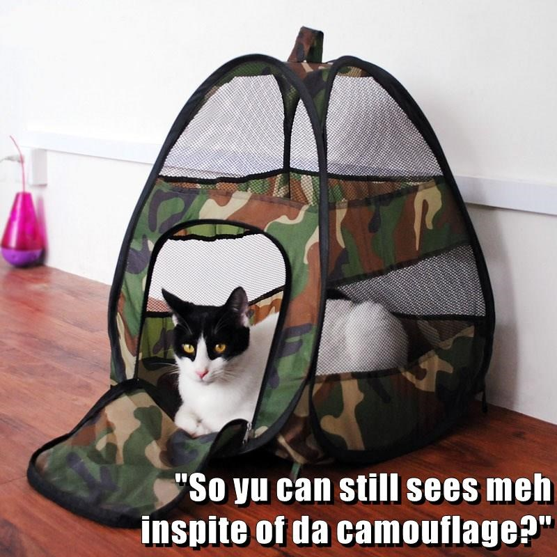 """""""So yu can still sees meh                                                                              inspite of da camouflage?"""""""